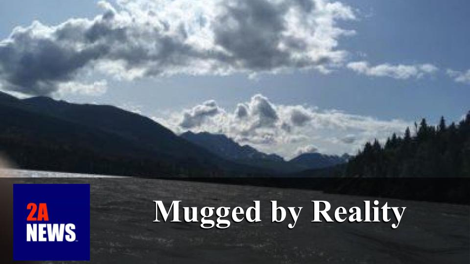 Mugged by Reality