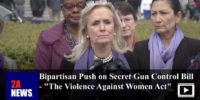 "Bipartisan Push on Secret Gun Control Bill – ""The Violence Against Women Act"""