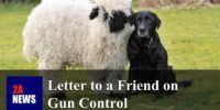 Letter to a Friend on Gun Control