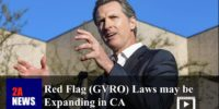 Red Flag (GVRO) Laws may be Expanding in CA