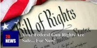 Your Federal Gun Rights Are Safe… For Now!