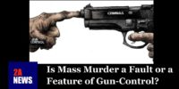 Is Mass Murder a Fault or a Feature of Gun-Control?