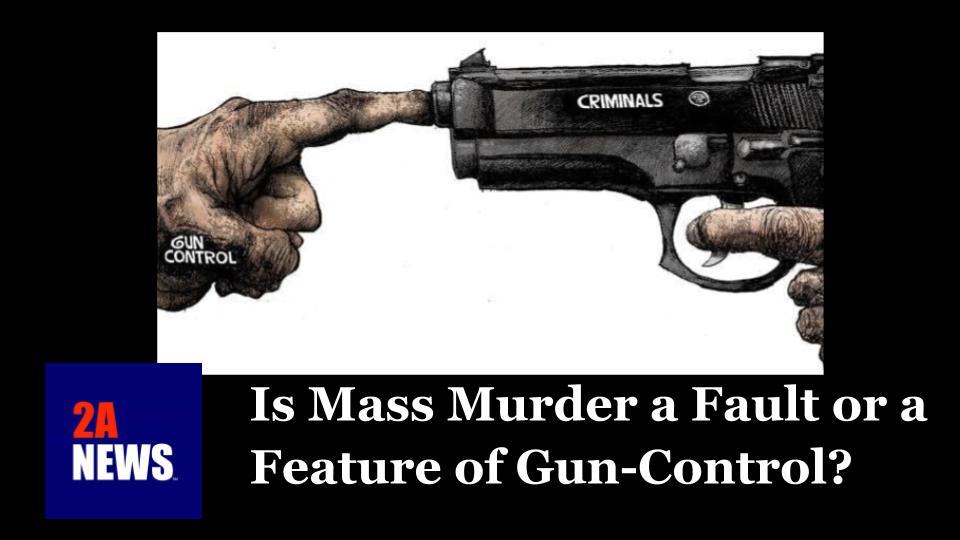 Is Mass Murder a Fault or a Feature of Gun-Control?
