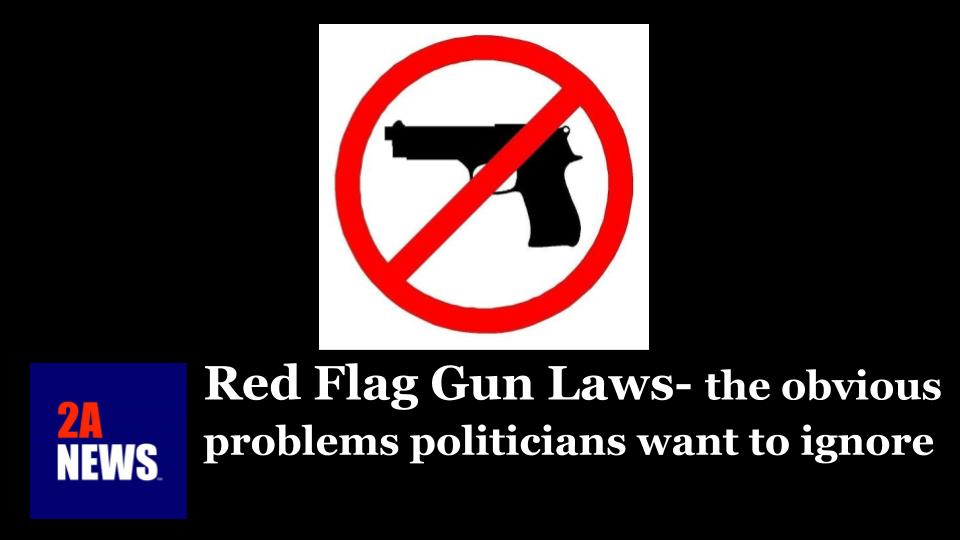 Red Flag Gun Laws- the obvious problems politicians want to ignore